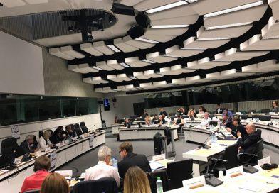 Торговля, ценности и гражданское общество в ЕС: что общего?